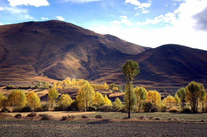#青春万岁,追梦无罪#迟到的318川藏线Part10两度分歧新都桥:错过的风景,是会再续的藏地情结